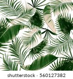 Mix Green Leaves Of Palm Tree...