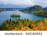 bled with lake  island and...   Shutterstock . vector #560182852