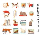 pet shop icons set with cats... | Shutterstock .eps vector #560277298