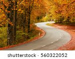 road in the autumnal forest in...   Shutterstock . vector #560322052