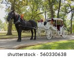 Horse And Carriage Ride In A...