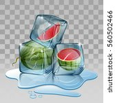 ice cube with watermelon.... | Shutterstock .eps vector #560502466