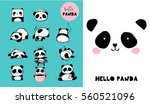 cute panda bear illustrations ... | Shutterstock .eps vector #560521096