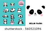 cute panda bear illustrations ... | Shutterstock .eps vector #560521096