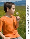 little boy blowing dandelion on ... | Shutterstock . vector #56053453