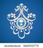 illustration  brooch with... | Shutterstock .eps vector #560553775