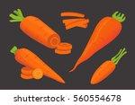set carrot vector illustration. | Shutterstock .eps vector #560554678