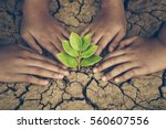 hands joining together around a ... | Shutterstock . vector #560607556
