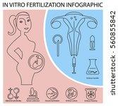 in vitro fertilization... | Shutterstock .eps vector #560855842