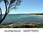 melbourne skyline from brighton ... | Shutterstock . vector #560975092