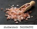 close up of himalayan salt and... | Shutterstock . vector #561036592