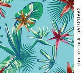 composition of tropical plants... | Shutterstock .eps vector #561041662