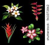 Flower Exotic Islands Set On...