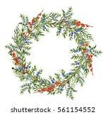watercolor juniper wreath with...   Shutterstock . vector #561154552