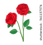 Stock vector two red roses 561157576