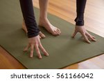 detail of hands and feet on a... | Shutterstock . vector #561166042