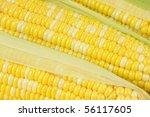 corn   Shutterstock . vector #56117605