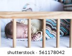 the sleeping newborn baby in... | Shutterstock . vector #561178042