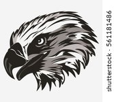 eagle head logo template  hawk... | Shutterstock .eps vector #561181486