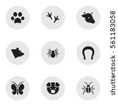 set of 9 editable nature icons. ... | Shutterstock .eps vector #561183058