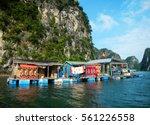 Kampong Phluk Floating Fishing...