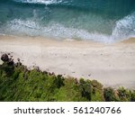 tropical beach with ocean and... | Shutterstock . vector #561240766
