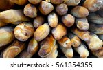 breads | Shutterstock . vector #561354355