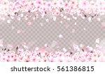 blooming cherry. spring... | Shutterstock .eps vector #561386815