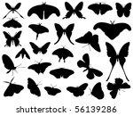 butterfly | Shutterstock .eps vector #56139286