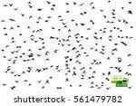 Flock Of Birds. Vector.