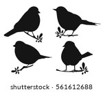 Stock vector silhouette of birds 561612688
