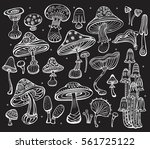 set of sketch of mushrooms on... | Shutterstock .eps vector #561725122