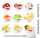 big collection of fruit in a... | Shutterstock .eps vector #561764272