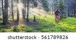 ukraine  mykulychyn   june 4 ... | Shutterstock . vector #561789826