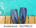 black and blue swim fins on the ... | Shutterstock . vector #561798112