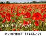 red poppy field with the... | Shutterstock . vector #561831406