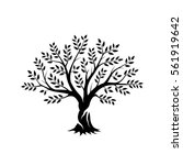 olive tree silhouette icon... | Shutterstock .eps vector #561919642