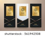 vector set packaging templates... | Shutterstock .eps vector #561942508