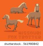 horse missouri fox trotter... | Shutterstock .eps vector #561980842