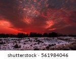 fiery orange colorful sunset .... | Shutterstock . vector #561984046
