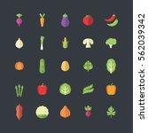vegetables icon in modern flat... | Shutterstock .eps vector #562039342
