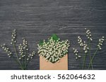 lily of the valley on gray... | Shutterstock . vector #562064632
