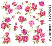 rose illustration object | Shutterstock . vector #562090096