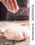 bread bun crusty fresh warm... | Shutterstock . vector #562093426