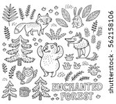 enchanted forest. vector black... | Shutterstock .eps vector #562158106