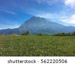 beautiful mount of kinabalu...   Shutterstock . vector #562220506