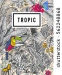 vector card vintage. exotic... | Shutterstock .eps vector #562248868