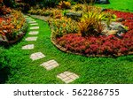 pathway in garden green lawns... | Shutterstock . vector #562286755