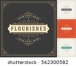 royal logo design template... | Shutterstock .eps vector #562300582