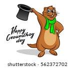 happy groundhog day... | Shutterstock .eps vector #562372702